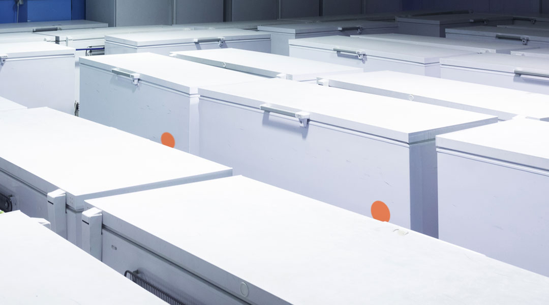 Freezer production - temperature monitoring - Flextrack